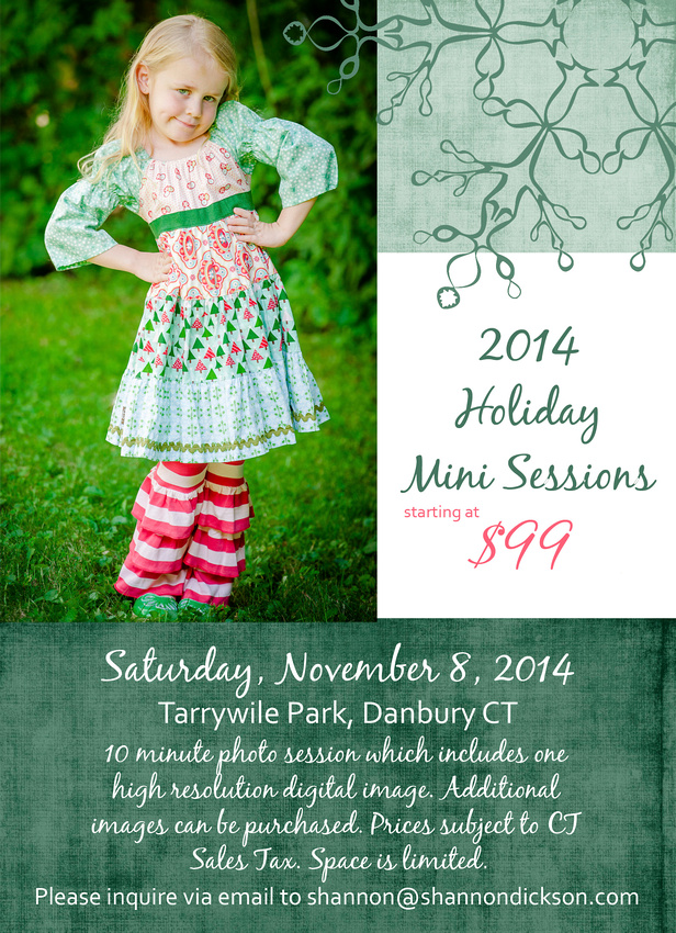 2014 Holiday Portrait Promotion